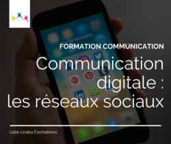 Communication digitale (Visioconférence)
